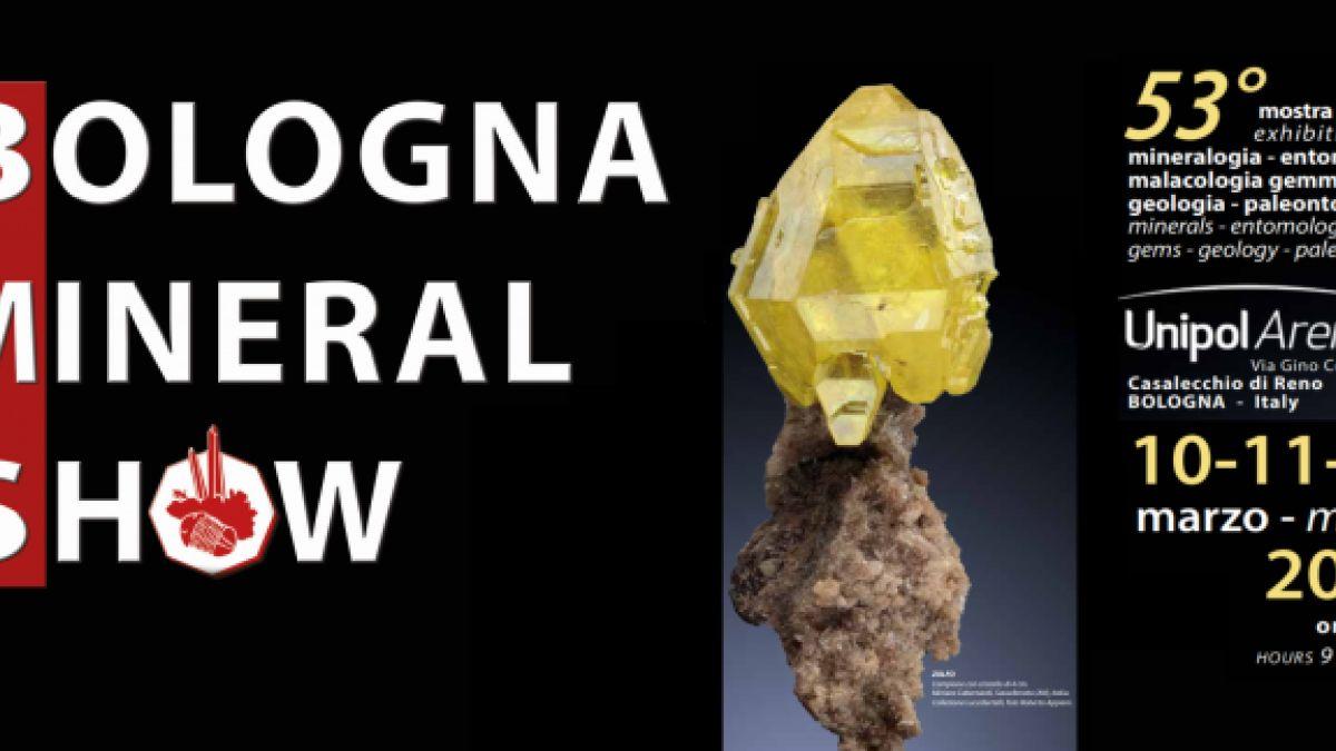 Calendario Fiere Alimentari 2020.Bologna Mineral Show A Casalecchio Di Reno 2020 Bo