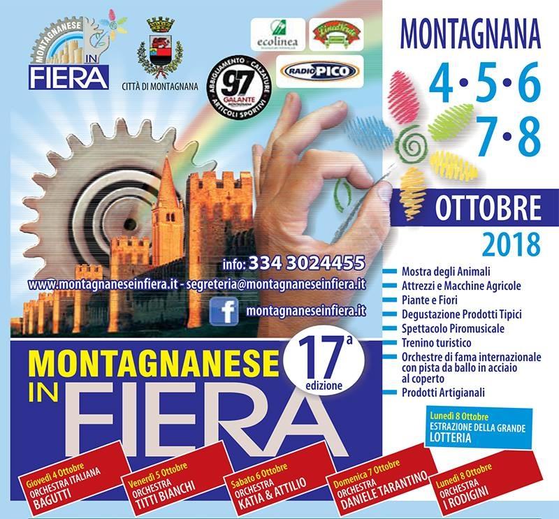 Montagnanese in fiera a montagnana date 2018 pd for Fiere oggi veneto