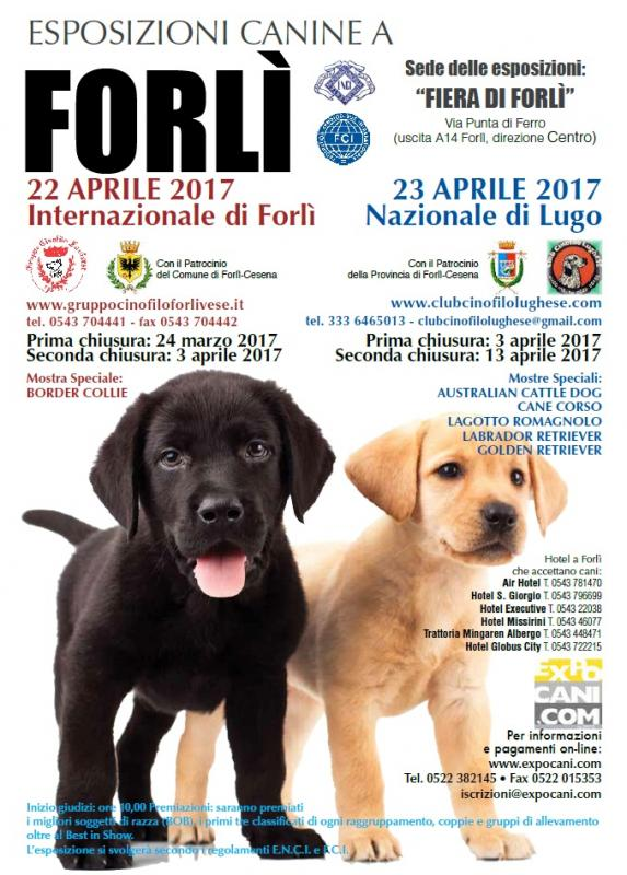 Expocani Calendario.Esposizione Canina Internazionale Di Forli A Forli 2017