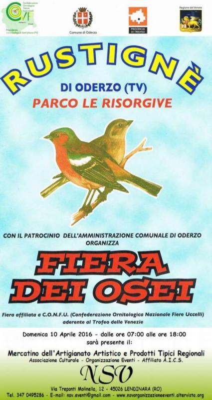 Calendario Fiere Ornitologiche 2020.Fiera Dei Osei A Oderzo 2016 Tv Veneto Eventi E Sagre