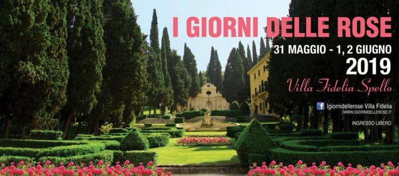 I Giorni Delle Rose A Spello 2019 Pg Umbria Eventi E Sagre