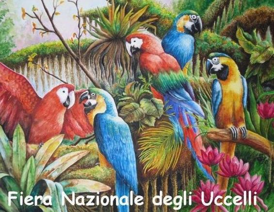 Calendario Fiere Ornitologiche.Fiera Nazionale Degli Uccelli A Trebaseleghe 2018 Pd