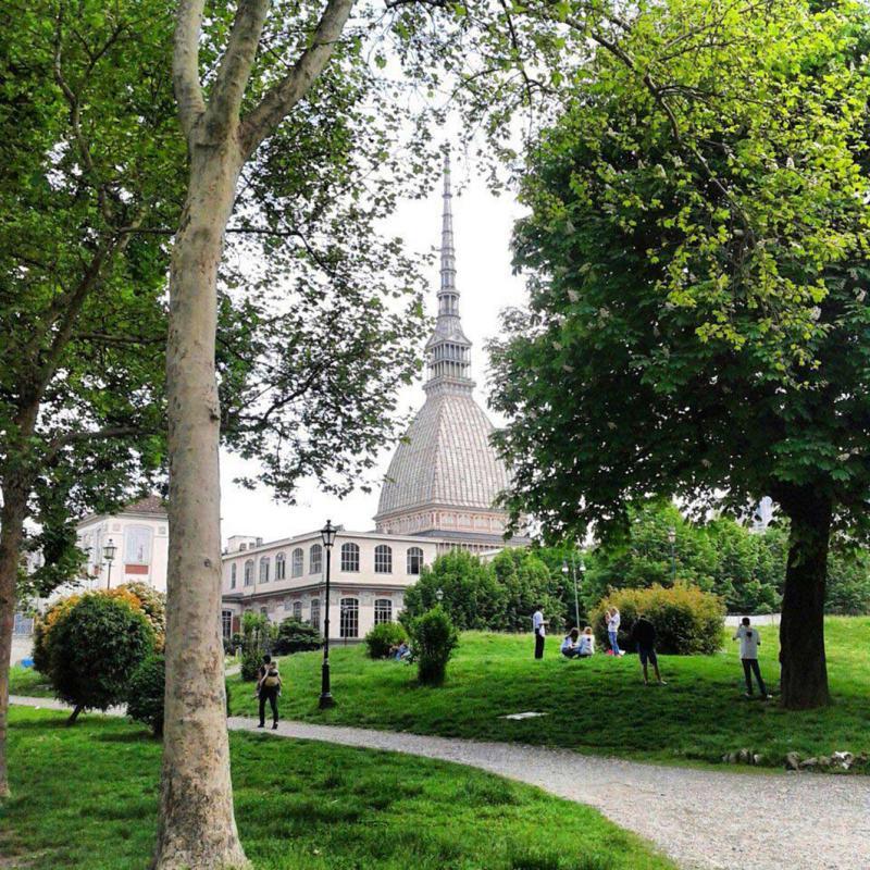 Giardini reali summer festival a torino 2016 to for Corso progettazione giardini
