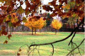 Giardini Moderni Borgomanero : Fondazione marazza a borgomanero date no piemonte