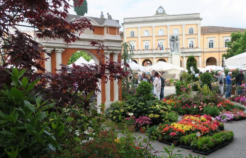 Balcone fiorito tutto l anno le dalie da terrazzo for Giardini fioriti tutto l anno
