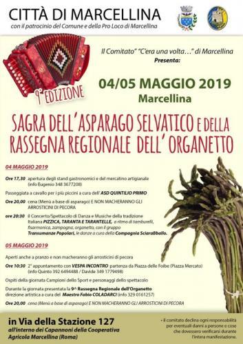 Sagra Dell'asparago Selvatico - Marcellina