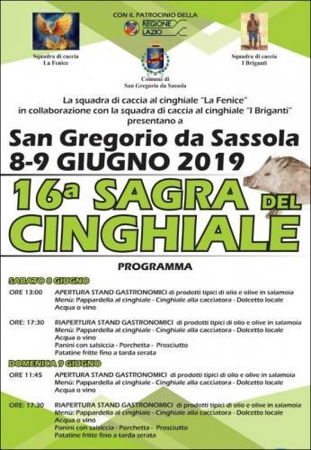 Sagra Del Cinghiale - San Gregorio Da Sassola