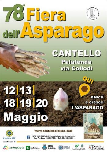 Fiera Dell'asparago - Cantello