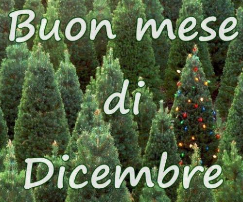 Natale a cividale a cividale del friuli ud 2018 friuli for Eventi oggi fvg